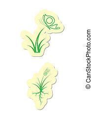 Grren Plant Icons