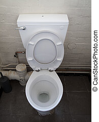 Grubby Toilet - Grubby toilet with lid and seat up