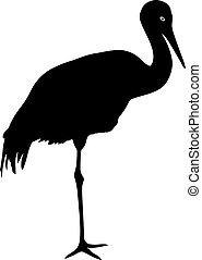 grue, blanc, silhouette, oiseau, fond