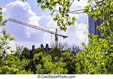 grues, horizon, site construction, au-dessus