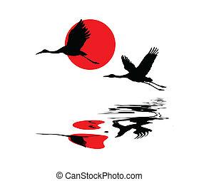 grues, soleil, ciel, illustration, vecteur, fond, rouges
