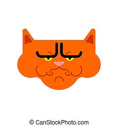 Grumpy cat isolated. Angry pet. Vector illustration