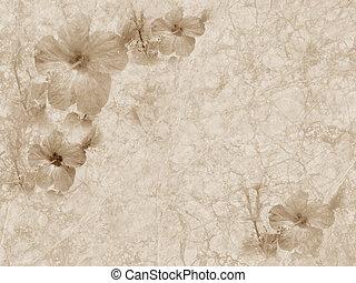 grunge, årgång, prydnad, papper, strukturerad, blommig