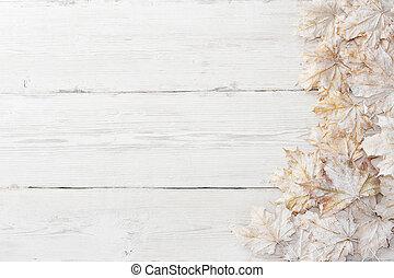 grunge, 木制, 结束, 秋季, 背景。, 白色, 离开, 枫树