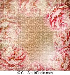 grunge, 1, achtergrond, (, rozen, set), mooi