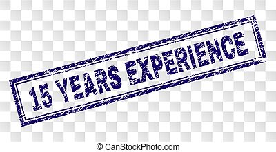 Grunge 15 YEARS EXPERIENCE Rectangle Stamp