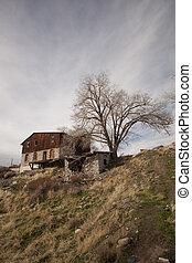 grunge, abandonnés, a mûri, maison, cabane, bois, cabine, maison,  structure