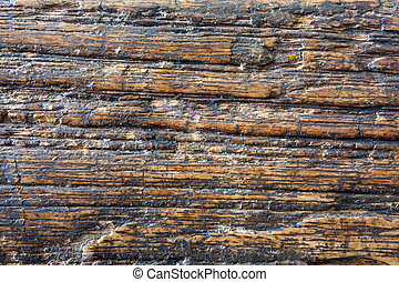 Grunge ace wood texture