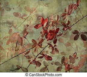 grunge, anticaglia, fiore, fondo
