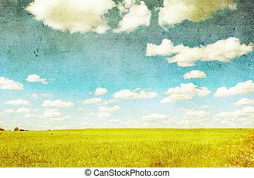 grunge, avbild, av, gröna gärde, och blåa, sky