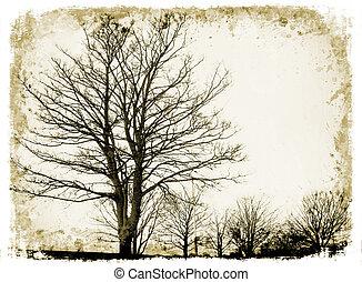 grunge, bäume