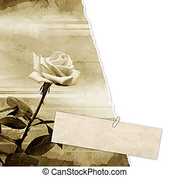Grunge background - Grunge vintage background with rose
