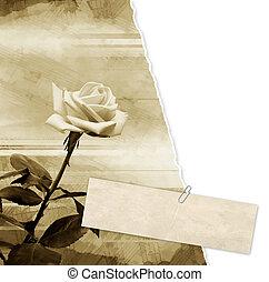 Grunge background - Grunge vintage background with rose