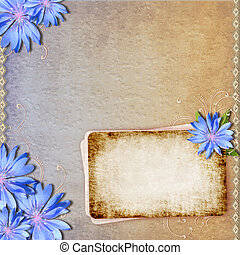 Grunge background with chicory