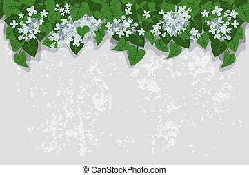 Grunge background with white lilacs. Detailed vector.
