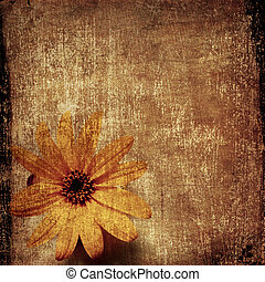 Grunge background with yellow flower