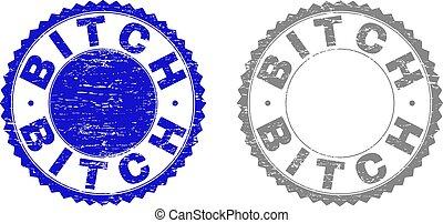 Grunge BITCH Scratched Watermarks