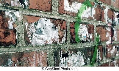 Grunge brick wall dolly shot