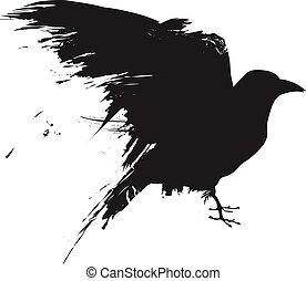 grunge, cuervo, vector, silueta