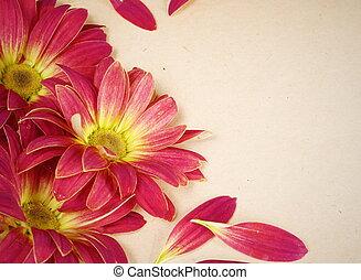 Grunge Floral Flower Background