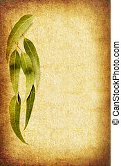Grunge background with gum leaves, with room for your text.