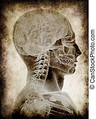 grunge head - 3d rendered illustration of human head - ...