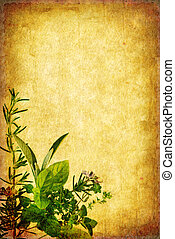 Herbs form a border on grunge background, with lots of copy-space.
