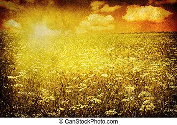 grunge, image, i, grønnes felt, og blå, himmel