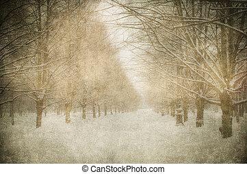 grunge, immagine, di, paesaggio inverno