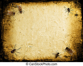 Grunge insects - Grunge background with spiders and flies