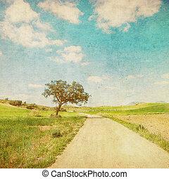 grunge, kép, közül, vidéki táj, út