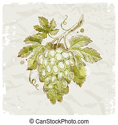 grunge, kéz, húzott, szőlőfürt, képben látható, szüret,...