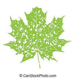 grunge leaf