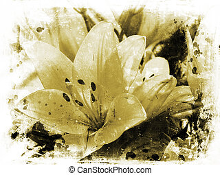 Background of lillies on grunge