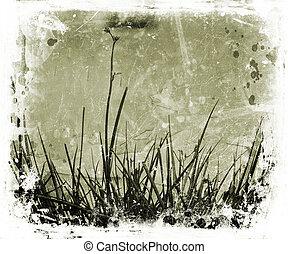 Grunge nature - Grass and foliage on grunge background
