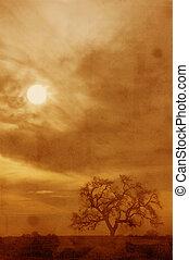 Grunge Oak Tree