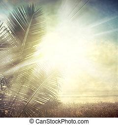 grunge palm-9
