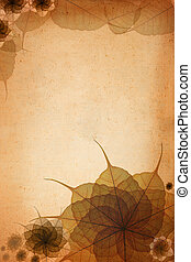 grunge paper with decorate skeleton leaf background