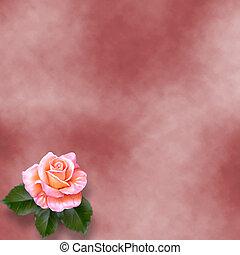 grunge, papier, schilderij, felicitatie, roos
