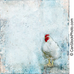 grunge, plano de fondo, gallo