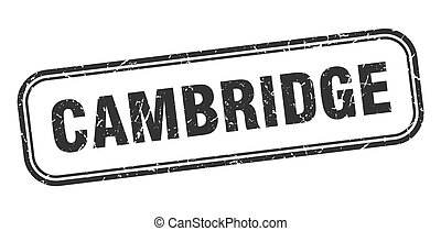 grunge, pretas, cambridge, sinal, stamp., isolado