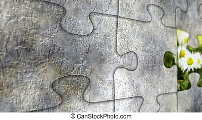 Grunge puzzle and camomille