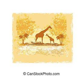 grunge, résumé, girafe, fond, africaine, silhouette, paysage