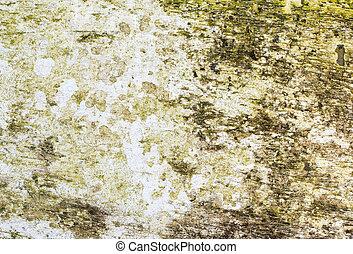 grunge, ridit ut, måla, bakgrund., ved, vit