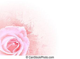 grunge, rooskleurige achtergrond, met, roos