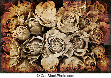 Grunge Roses background - Grunge roses background - flowers...