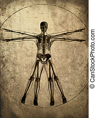 grunge skeleton - 3d rendered illustration of a human...