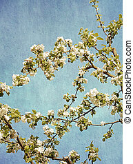 Grunge spring flowers texture