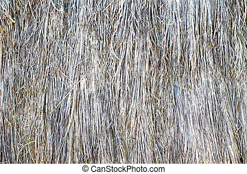 Grunge texture background of dry grass surface top view close up