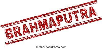 Grunge Textured BRAHMAPUTRA Stamp Seal - BRAHMAPUTRA seal...